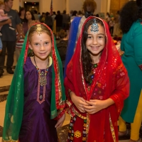 Experience Indian culture at the Saint Louis Art Museum's Passport to India