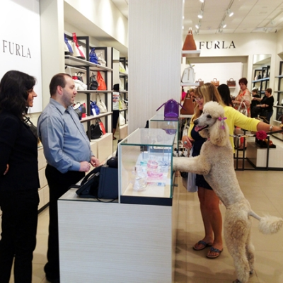 Pamper your pooch with a shopping date at Taubman Prestige Outlets.
