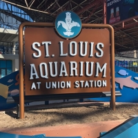 The Best of STL: Summer camps that celebrate St. Louis