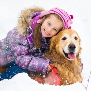 Cold weather tips for your pet