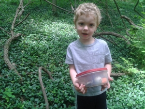 Caches like this one are fun for all ages to find.